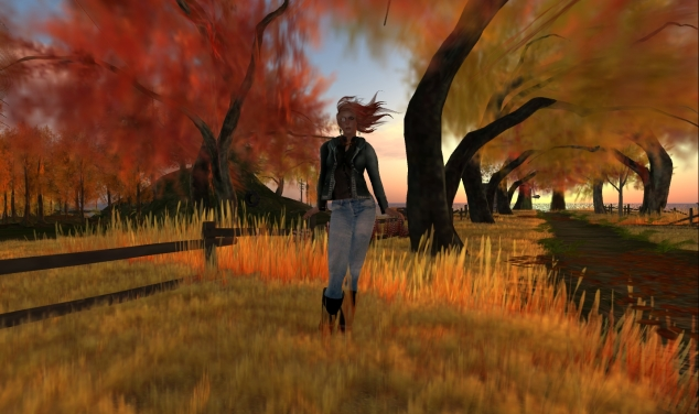 Autumn-at-Small-Town-1